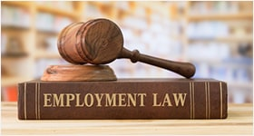 practice area - Employment Law